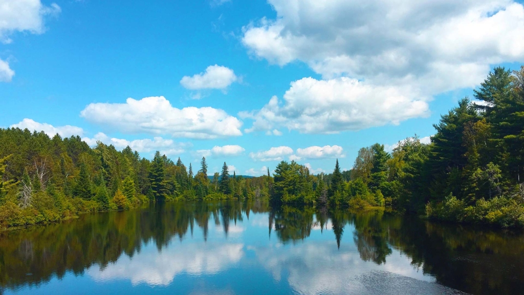 Support action to protect our environment in Ontario